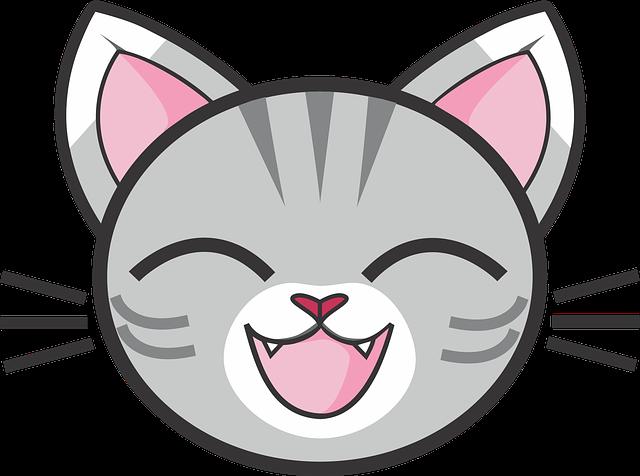 gray-tabby-cat-1732372_640